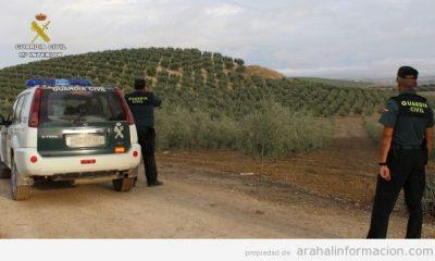 AionSur guardia-campo-400x240 Detenidas tres personas por el robo de más de 46.090 kilos de aceitunas Osuna Provincia