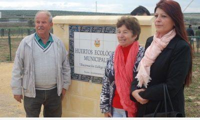 AionSur DSC_0727-400x240 Con la adjudicación de los Huertos Ecológicos Municipales se cumple el deseo de su benefactora, Encarnación Gallego Sin categoría Huertos ecológicos Arahal