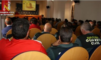 AionSur SEGURIDAD-PRIVADA-400x240 Jornadas de vigilancia rural de la Guardia Civil en Sevilla Empresas Formación y Empleo