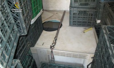 AionSur TANQUE-OCULTACION-400x240 El Seprona imputa de un delito contra flora y fauna a una vecino de Isla Mayor que transportaba 74 anguilas Sucesos  Anguilas delito flora y fauna