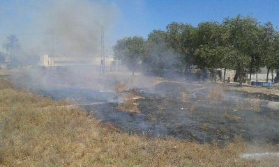 AionSur IMG-20150724-WA0017-400x240 Se repiten los incendios en pastos en zonas con más peligro Sucesos  Incendios en pasto