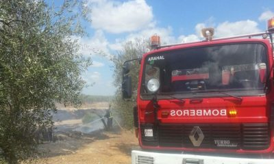 AionSur IMG-20150823-WA0016-400x240 Los bomberos de Arahal intervienen en un incendio en pastos en el Pago de la Banda Sucesos
