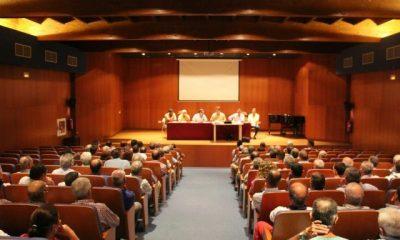 AionSur: Noticias de Sevilla, sus Comarcas y Andalucía campiña-400x240 La campaña de verdeo en Arahal comienza el 8 de septiembre Empresas verdeo 2015 cosecha Campiña aceituna