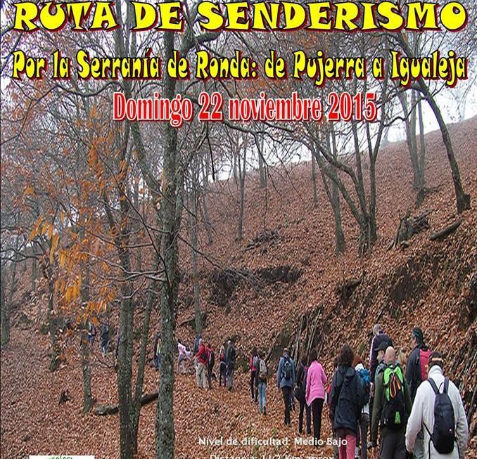 AionSur 12202078_167145996966883_744281844_n-1 Senderismo por el castañar de la Serranía de Málaga el día 22 de noviembre Medio Ambiente