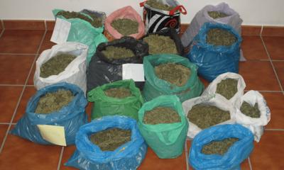 AionSur foto-bolsas-marihuana_1-400x240 Detenidos en Marchena dos vecinos de Granada por tráfico de estupefacientes Sucesos