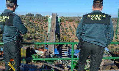 AionSur guadia-aceitunas-400x240 La Guardia Civil investiga a un total de 7 personas por delito de hurto de aceitunas y receptación Osuna Provincia