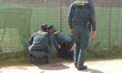 AionSur 20160415_121629-400x240 Agentes del Seprona investigan los hechos que provocaron la muerte del bodeguero del Amparo del Sur Sucesos