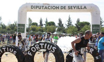"""AionSur citius-400x240 Cuenta atrás para la V Edición de la """"Citius Fortius Runner"""" de Utrera Deportes Provincia"""