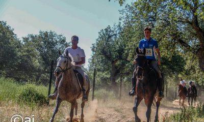 AionSur caballos-2-400x240 La hípica arahalense disfrutó el sábado de su día grande Deportes