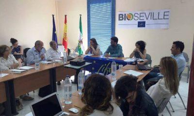 AionSur ACEITE-400x240 Los autobuses de Sevilla probarán en 2017 un biodiésel desarrollado con residuos de viviendas Provincia