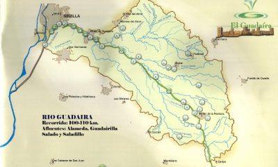 AionSur Guadairarecorridoia-400x240 El río Salado de Morón de la Frontera repoblado con 250 ejemplares de pez salinete, especie en peligro de extinción Morón de la Frontera Provincia