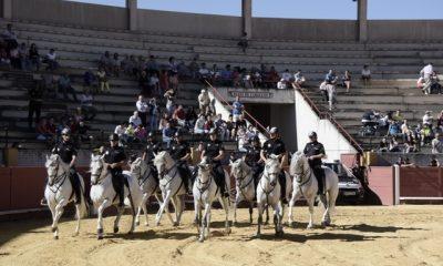 AionSur DSC_1843-400x240 La Policía Nacional protagoniza una exhibición de distintas unidades de actuación en la Plaza de Toros de Morón Sin categoría