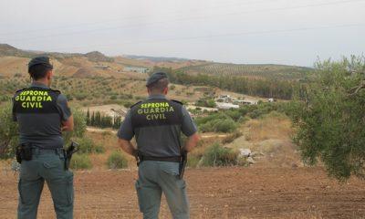 AionSur IMG_6105-400x240 El Seprona investiga a 26 vecinos de una urbanización en Morón construida en terreno no urbanizable y de especial protección Sin categoría