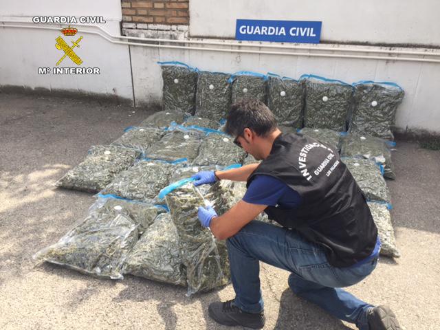 AionSur MARIHUANA La Guardia Civil desmantela un punto de venta de marihuana manufacturada al por mayor Los Palacios Provincia Sucesos
