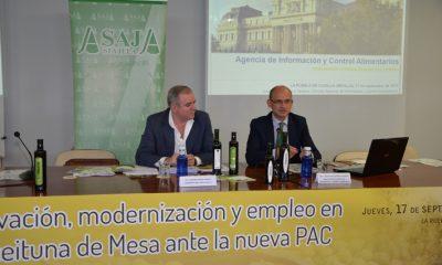 AionSur asaja-jornadas-400x240 ASAJA-Sevilla celebra su XXXIV Jornada Aceituna de Mesa Provincia