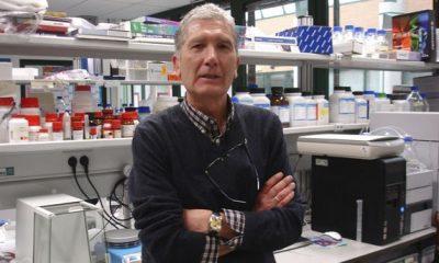 AionSur sanchezalcazar1-400x240 El equipo del doctor Sánchez Alcázar descubre nuevas terapias para enfermedades mitocondriales Marchena Provincia Salud