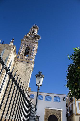 AionSur: Noticias de Sevilla, sus Comarcas y Andalucía 30276113285_a5134e470a Ciclo de conferencias para conmemorar el V Centenario de la Fundación Hospital Santo Cristo Agenda Cultura V Centenario de la Fundación Hospital Santo Cristo
