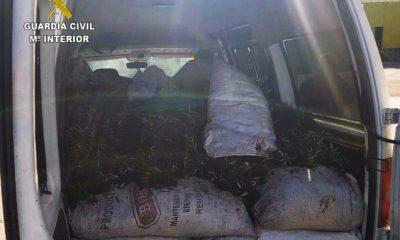 AionSur VEHICULO-400x240 5 detenidos en Estepa y Osuna por el hurto de 2.809 kilos de aceitunas Estepa Provincia