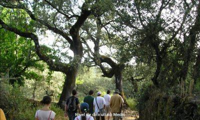 """AionSur cartel-ruta-alájar-400x240 Nueva ruta de senderismo de la Asociación """"Jaedilla"""" Asociaciones Medio Ambiente Sociedad"""