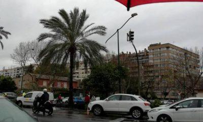 AionSur: Noticias de Sevilla, sus Comarcas y Andalucía 17098557_10208474015224283_7724450133860426128_n-400x240 40 incidencias atendidas por la Emergencias 112 de Andalucía a causa del temporal de viento Sucesos