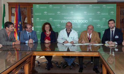 AionSur: Noticias de Sevilla, sus Comarcas y Andalucía 33131171012_fdecd2e20a_z-400x240 La Clínica Santa Isabel firma un convenio con el Hospital Virgen del Rocío para fomentar la donación de órganos y tejidos Salud