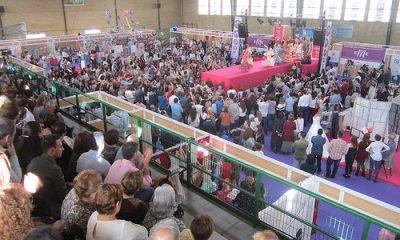 AionSur 33375859876_dcef651401-400x240 Éxito de participación en EME con más de 10.000 visitas y cincuenta empresarias y emprendedoras Carmona Provincia