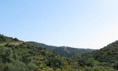 AionSur Andalucia-Especiales-Conservacion-Europea-Natura_518659416_83604357_667x375-400x240 La Junta oferta 575 plazas de formación ambiental para  mejorar la cualificación profesional del sector Formación y Empleo