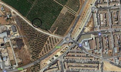 AionSur: Noticias de Sevilla, sus Comarcas y Andalucía PILAS-400x240 Hallan el cadáver de una mujer de 50 años degollada en un camino de Pilas Provincia