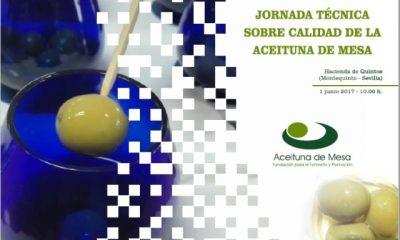 AionSur acei-400x240 Todos los aspectos actuales del sector de la aceituna de mesa, a debate el jueves en la Hacienda de Quinto Medio Ambiente