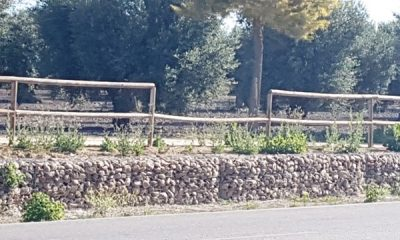 AionSur 20170606_095146-400x240 Rompen 11 listones de la valla de madera del camino del cementerio San Gabriel Arahal Provincia