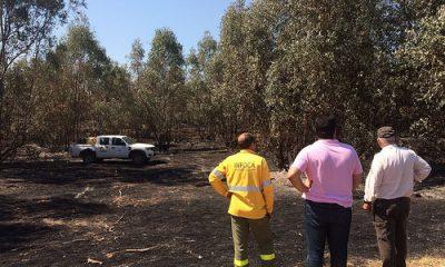 AionSur 35737823090_95fbc7a78e-400x240 La rápida actuación de los bomberos evitó daños importantes en La Puebla Sucesos