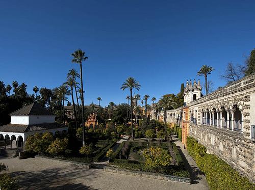 AionSur 35897560645_ced3d9f14b El Alcázar rompe su récord histórico de visitantes Sociedad