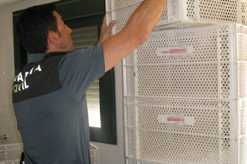AionSur 36267990396_5b8eb330a9-360x240 Recuperada una parte de las cajas sustraídas en una panadería de Isla Cristina Andalucía Huelva