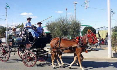 AionSur 36662706056_8d7840bd3a-400x240 Multas de 50 a 200 euros a caballistas y cocheros mal vestidos en la feria de Arahal Feria del Verdeo