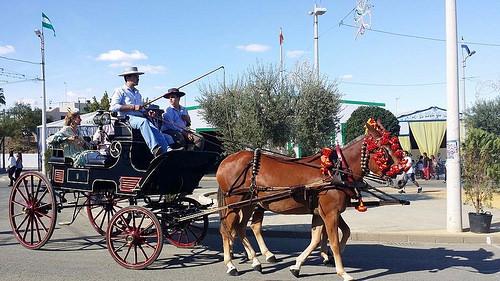 AionSur 36662706056_8d7840bd3a Multas de 50 a 200 euros a caballistas y cocheros mal vestidos en la feria de Arahal Feria del Verdeo