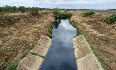 AionSur DSF9371-400x240 Ecologistas en Acción pide a la Junta la revisión del estado de ejecución del Programa Doñana 2005 Medio Ambiente