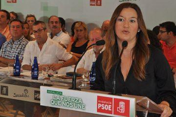 AionSur 36602052690_e7d2ee0382-360x240 Los sanchistas no consiguen sacar adelante en Andalucía su propuesta del 3 % de avales Política