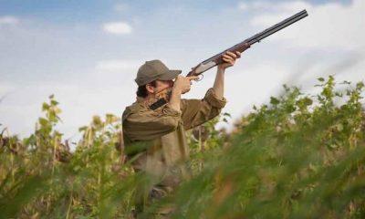 AionSur CAZA-400x240 Las licencias de caza y pesca se pueden obtener desde hoy por vía telemática Deportes Sociedad