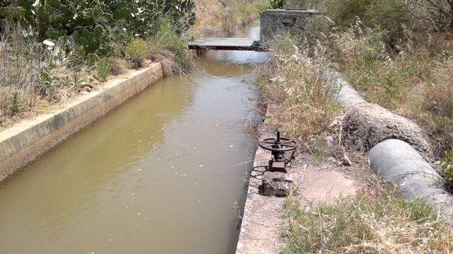 AionSur Regadíos-6 La Junta destina 3,8 millones de euros a estudios que persiguen mejorar la eficiencia de las instalaciones de riego Agricultura
