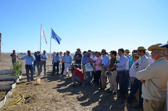 AionSur 24113450268_4f29c248e5_z La agricultura de conservación, en peligro por el retraso de la renovación del herbicida glisofato, según Asaja Agricultura