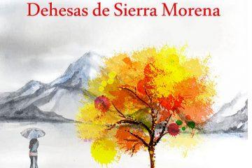 AionSur 37082540043_e966608b7a-360x240 Las Dehesas de Sierra Morena celebran su XV Aniversario con un otoño repleto de actividades Provincia