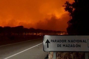 AionSur Incendio-Moguer-360x240 El Gobierno invertirá un millón de euros en labores para restaurar la zona del incendio de Moguer Sucesos