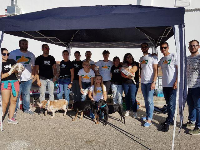 AionSur 814c121c-142b-46c9-8761-16ec1282dafe Los perros del Amparo del Sur protagonizarán un Belén Viviente el próximo domingo Sociedad