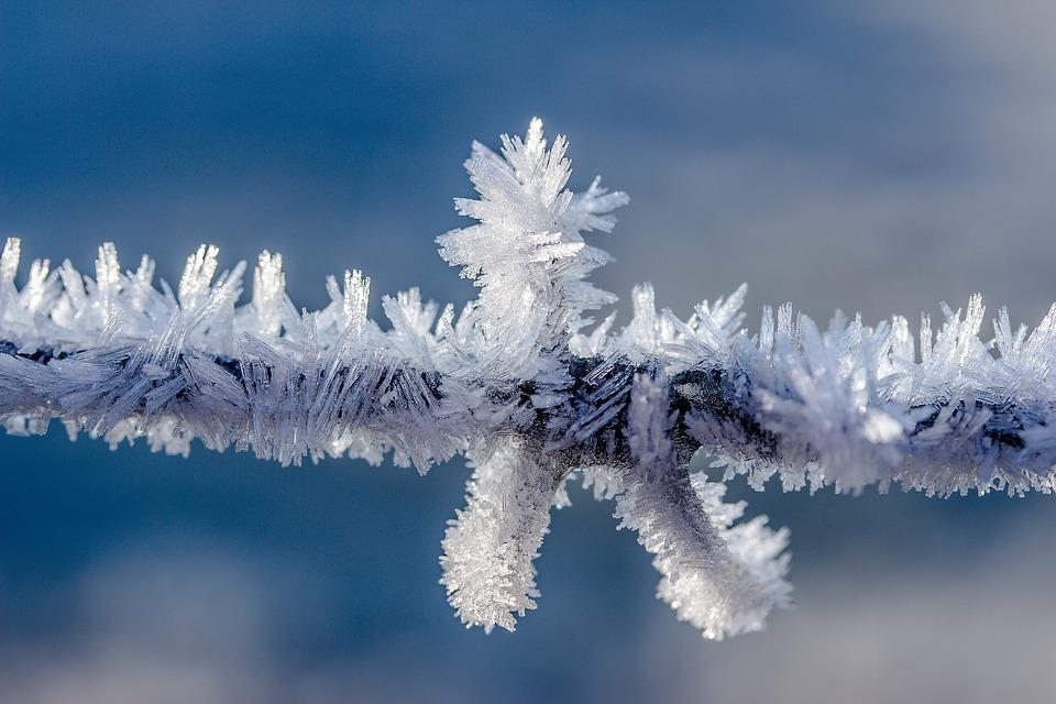 AionSur escarcha Frío, con escarcha matinal y posibilidad de nevadas en algunas zonas Sociedad
