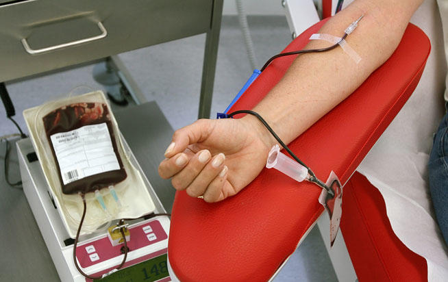 AionSur donacion-sangre-1 Puntos de donación de sangre en la provincia de Sevilla esta semana Provincia Salud