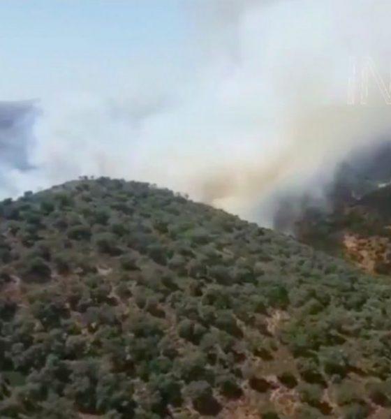 AionSur IncendioInfocaAION-copia-560x600 Entra el vigor el nivel máximo de riesgo de incendios forestales Incendios Forestales Sucesos