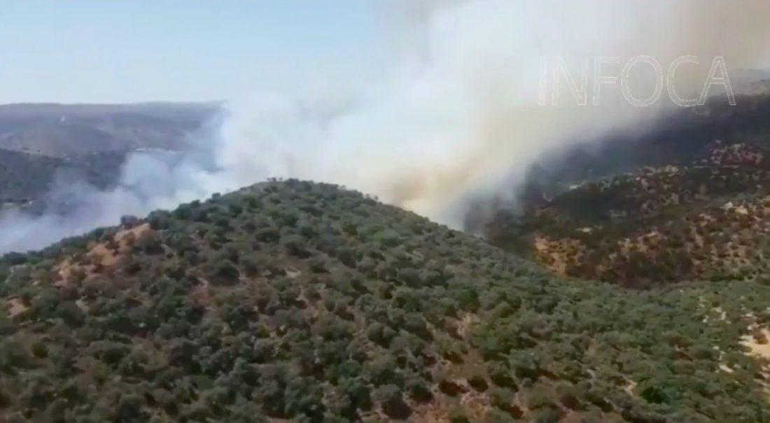 AionSur IncendioInfocaAION-copia Entra el vigor el nivel máximo de riesgo de incendios forestales Incendios Forestales Sucesos