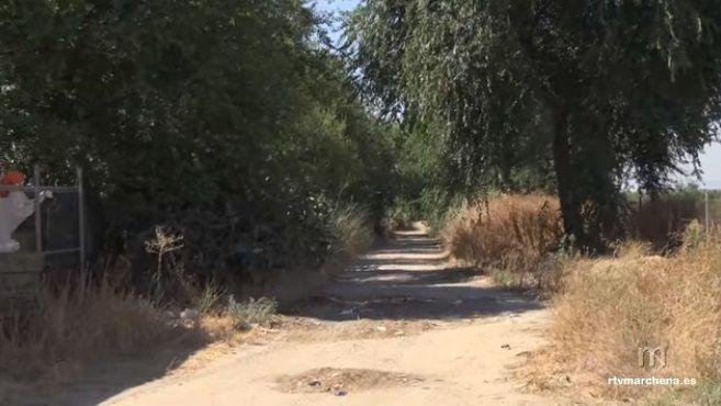 AionSur Vistaalegre-camino-Marchena El arreglo de Vista Alegre supondrá la recuperación de un camino muy transitado en Marchena Marchena