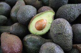AionSur aguacate-exportaciones-260x170 Sandías y aguacates suben en el ranking de la exportación de fruta en Andalucía Andalucía