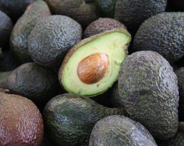 AionSur aguacate-exportaciones-378x300 Sandías y aguacates suben en el ranking de la exportación de fruta en Andalucía Andalucía